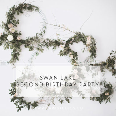 Swan Lake Second Birthday Party