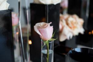 blush rosebud