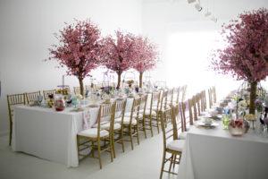 Park Studios Atlanta cherry blossom baby shower
