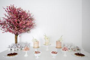 tea party baby shower dessert table