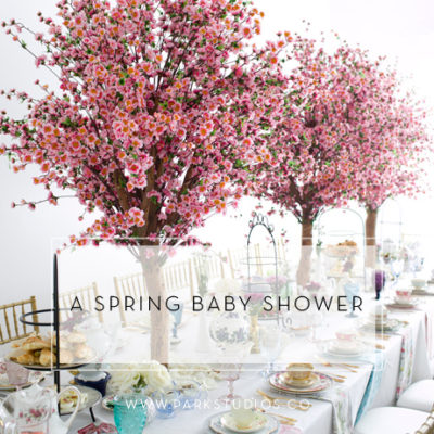 A Spring Baby Shower