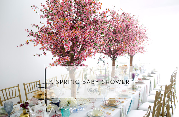 A Spring Baby Shower Feature Image