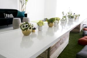 wild one table decor