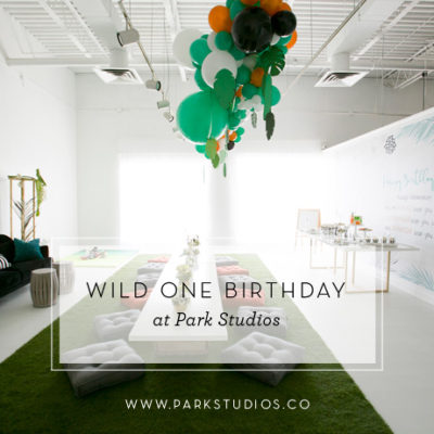 A Wild One Birthday at Park Studios